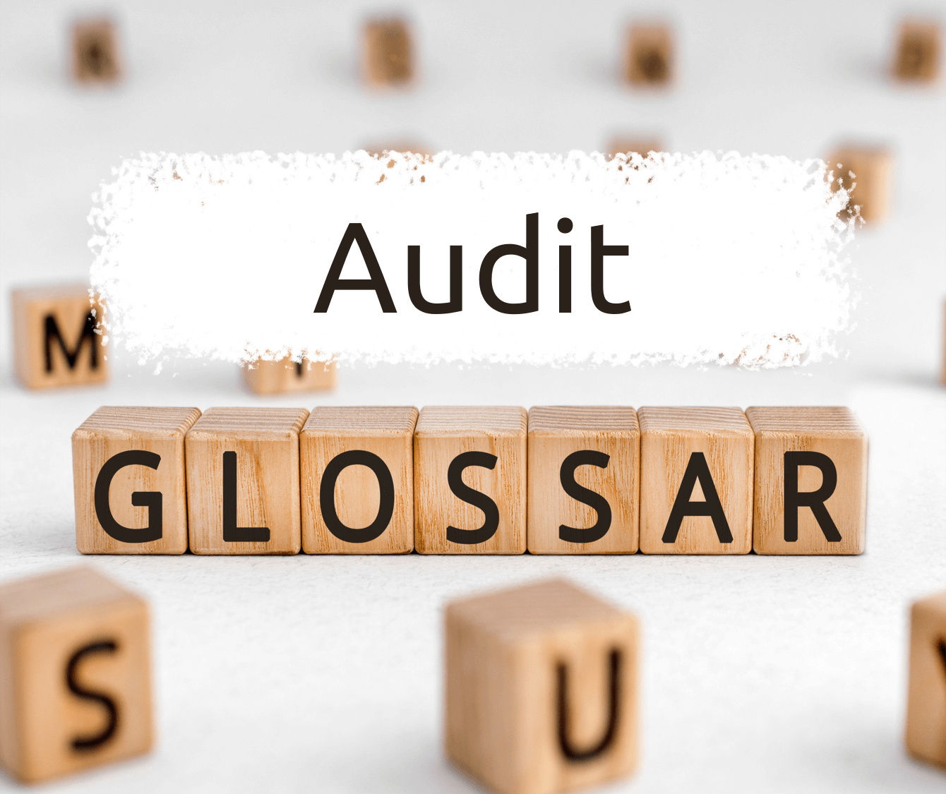 Read more about the article Audit